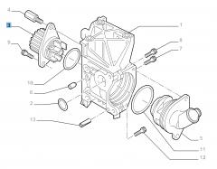 Wasserpumpe für Fiat und Fiat Professional